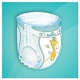 Pampers Baby Dry Pants Windeln, Mega Plus Pack, Größe 5 (Junior), 7-18 kg, (1 x 84 Windeln)