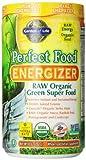 Garden of Life Perfect Food® RAW - Energizer Raw Organic  Green Super Food Powder, 282g Powder