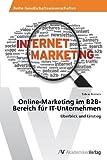 Online-Marketing im B2B-Bereich für IT-Unternehmen: Überblick und Einstieg