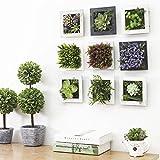 Décoration maison moderne plantes artificielles brève murale succulentes artificielle...