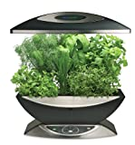51PApalCtrL. SL160  AeroGarden 900340 1200 6 Elite with Gourmet Herb Seed Kit, Black with Stainless Accents