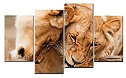 Canval prit painting Animal Wall Art Two Golden Gray Lions Hold on Together 4 Pieces Picture on Canvas