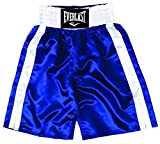 Everlast Pro boxing