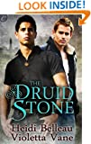 The Druid Stone (Layers of the Otherworld)