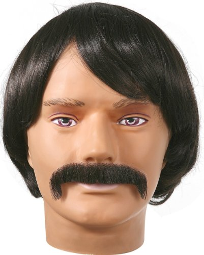 Sonny Bono Wig and Mustache Adult Costume Black One Size