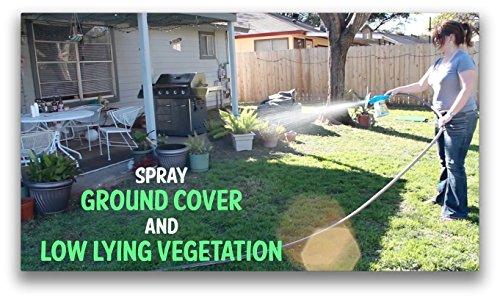 natural flea and tick yard spray kill control prevent fleas