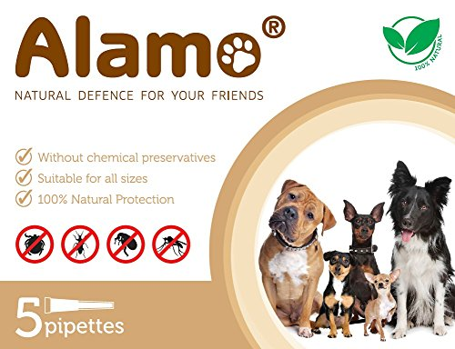 alamo-natural-defence-dog-5-pipettes