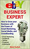 eBay Business Expert: How to Grow your Business with the Power of Email Marketing, Social Media, and Crowdfunding with Kickstarter (EBay Selling Made Easy Book 14)