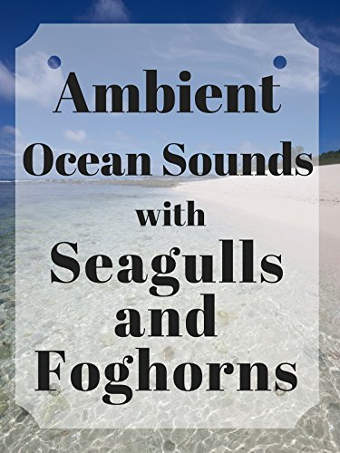 Ambient Ocean Sounds with Seagulls and Foghorns