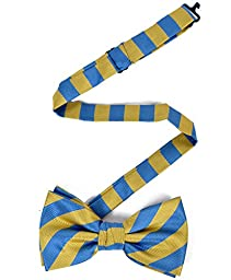 College Microfiber Striped Banded Bow Tie (Blue/Gold)