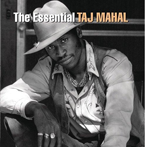 the-essential-taj-mahal