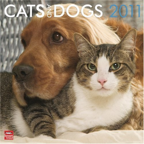 Cats & Dogs 2011 Square 12X12 Wall Calendar