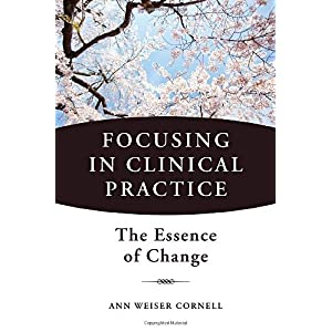 Learn more about the book, Focusing in Clinical Practice: The Essence of Change