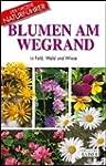 Blumen am Wegrand: In Feld, Wald und...
