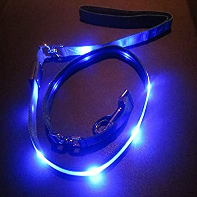 Blazin' Safety LED Dog Leash - USB Rechargeable Light,- 6 Ft, Waterproof - Avoid Danger