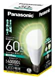 Panasonic LED電球 EVERLEDS 一般電球タイプ 全方向タイプ 10.0W  (昼白色相当) E26口金 電球60W形相当 810 lm LDA10NGZ60W