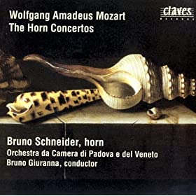 Concerto for Horn & Orchestra in E-flat Major, K.447: Allegro
