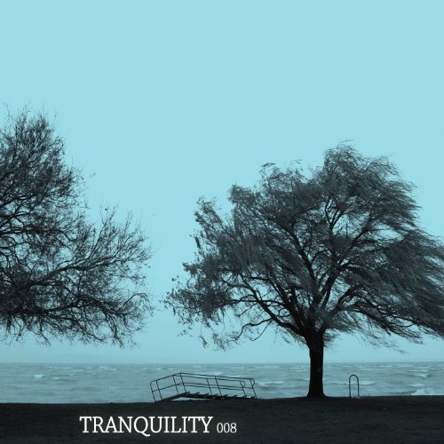 VA-Tranquility 008-(LOTIONCOMP140)-WEB-2013-DECRyPWEB Download