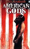 Image of American Gods (En Espanol): American Gods (Brainstorming) (Spanish Edition)