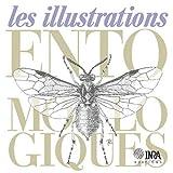 echange, troc Rémi Coutin, Alain Fraval, Robert Guilbot, Claire Villemant Jacques d'Aguilar - Illustrations entomologiques (les)