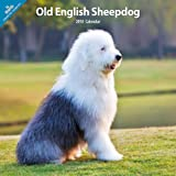 Various Old English Sheepdog 2014 Wall Calendar