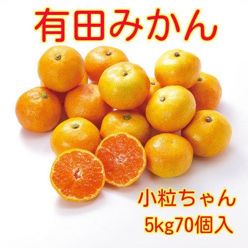 和歌山県産 有田 みかん 小粒ちゃん 2Sサイズ 5kg 約70個入 ご家庭用