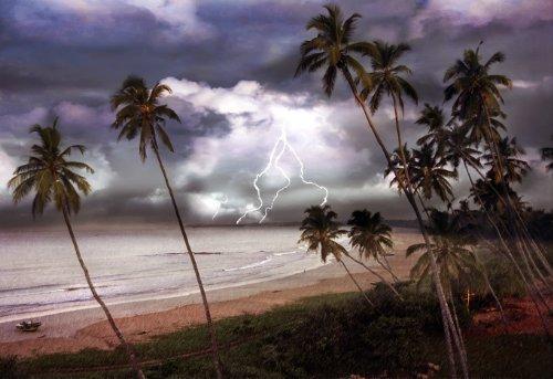 16x24 in. Glenn Losack Sri Lanka Storm images