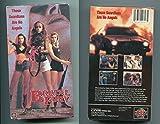 Brutal Fury [VHS]