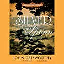 The Silver Spoon Audiobook by John Galsworthy Narrated by David Case