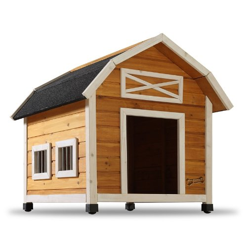 Pet Squeak The Barn Dog House Medium Doggie House Depot