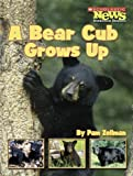 img - for A Bear Cub Grows Up (Scholastic News Nonfiction Readers: Animal Life Cycles) book / textbook / text book