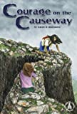 img - for Courage on the Causeway (Cover-to-Cover Novels: Adventure) book / textbook / text book