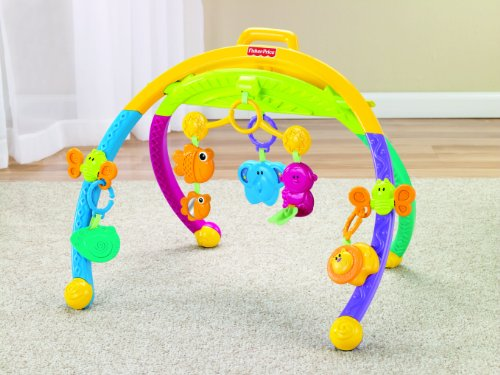 Fisher Price Growing Baby Animal Activity Gym Toddler Toys