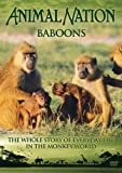 echange, troc Animal Nation - Baboons: the Whole Story [Import anglais]