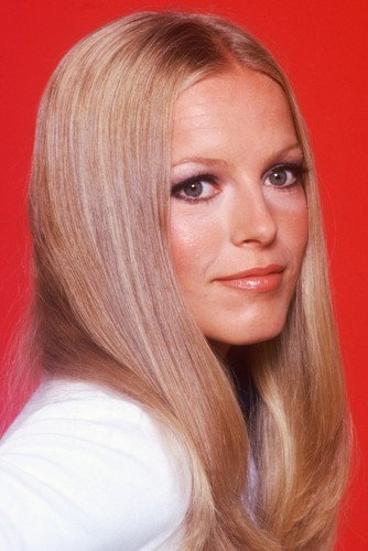 cheryl-ladd-rare-with-straight-hair-color-11x17-mini-poster