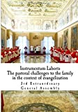 img - for Instrumentum Laboris: The Pastoral Challenges of the Family in the Context of Evangelization book / textbook / text book