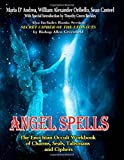img - for Angel Spells: The Enochian Occult Workbook Of Charms, Seals, Talismans And Ciphers book / textbook / text book