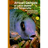 African Cichlids of Lakes, Malawi, and Tanganyika