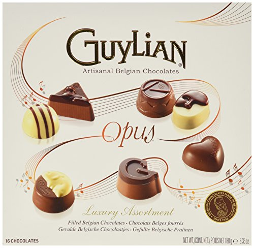 guylian-belgium-chocolates-16-piece-luxury-assortment-opus-635-ounce