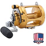 PENN International VS 2 SPEED, 50VSW Conventional Reels - 50VSW