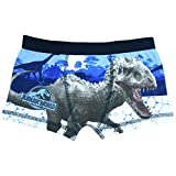 Jurassic World Idominus Rex & T-Rex Boys Boxer Shorts - Age 4-10 Years - 5-6 years (116 cms)