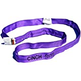 Round Sling 3 Ft. Purple Polyester Endless Round Sling 2,600lb Vertical Load Capacity-Violet (Roundsling)