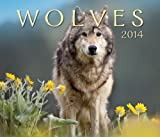 img - for Wolves 2014 book / textbook / text book