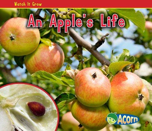 An Apple's Life