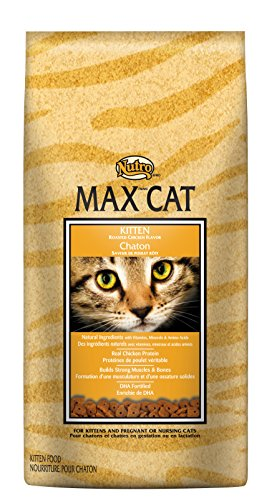 NUTRO MAX CAT Kitten Dry Cat Food, Roasted Chicken, 3 lbs. (Nutro Max Canned Cat Food compare prices)
