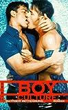 Boy Culture - Matthew Rettenmund