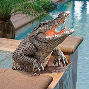 Amazon.com: Classic Crocodile Alligator Pool Home Garden