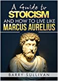 A Guide to Stoicism And How to Live Like Marcus Aurelius