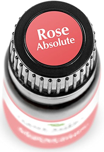 Rose-Absolute-Essential-Oil-5-ml-16-oz-100-Pure-Undiluted-Therapeutic-Grade