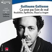 Baudelaire, Apollinaire, Éluard et Aragon lus et commentés par Guillaume Gallienne (Ça peut pas faire de mal 2) Performance Auteur(s) : Guillaume Gallienne Narrateur(s) : Guillaume Gallienne